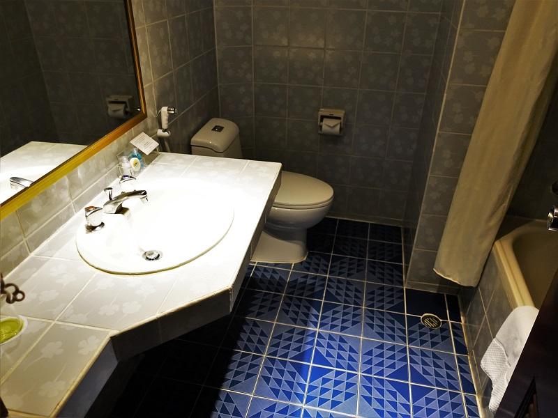 シティロッジバンコク(City Lodge Bangkok)の洗面所